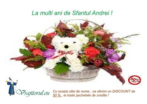 oferta de sf. Andrei(1)